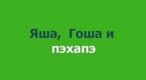 green-prv_300_auto_jpg
