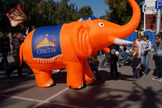 slon-kopiya