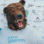 Вова-и-медведь